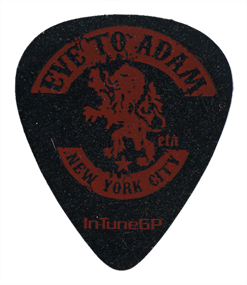Custom-Guitar-Picks-25