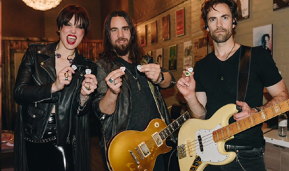 Custom Guitar Picks Halestorm