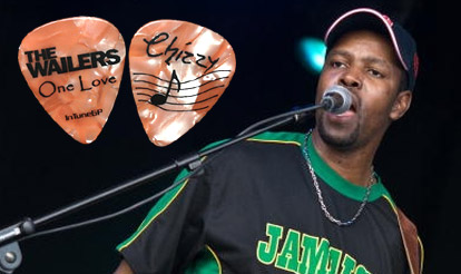 Personalized Guitar Picks Picks for The Wailers
